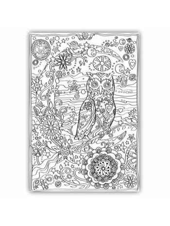 Сова. Раскраска-плакат книга купить